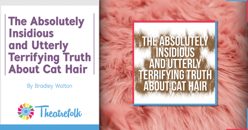 The Absolutely Insidious and Utterly Terrifying Truth About Cat Hair